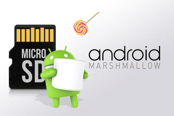 بطاقة الذاكرة SD عند التحديث من أندرويد™ Lollipop إلى أندرويد™ Marshmallow