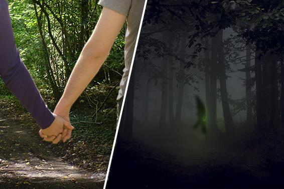 MISTERO: Giovani si avventurano nel bosco e si imbattono in...