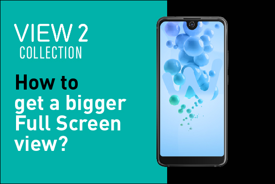 Video Tutorial: How to get a bigger Full Screen view?